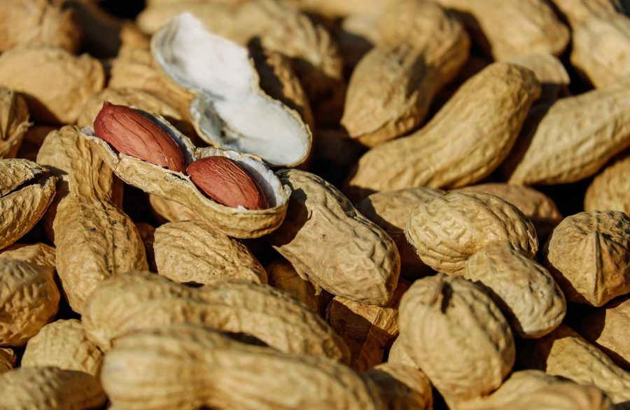 Peanut Problems: Peanut allergies are among the most common food allergy. Image: Pixabay